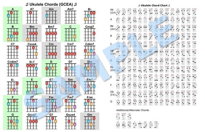 Amazing Am7 Chord Guitar Finger Position Composition Basic Guitar